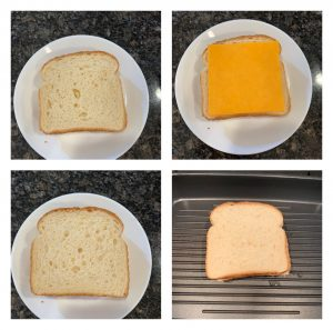 mayo cheese sandwich
